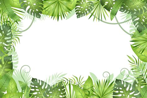 jungle background tropical leaves frame rainforest foliage plants   yummybuum