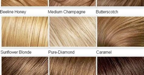 List Of All Hair Colors by List Of Hair Colors Hairs