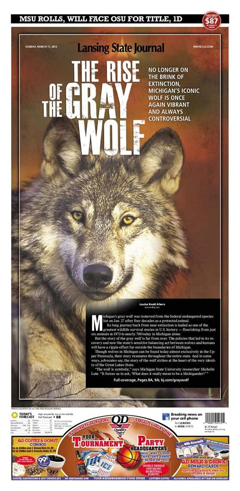 wolves  yellowstone student worksheet answers
