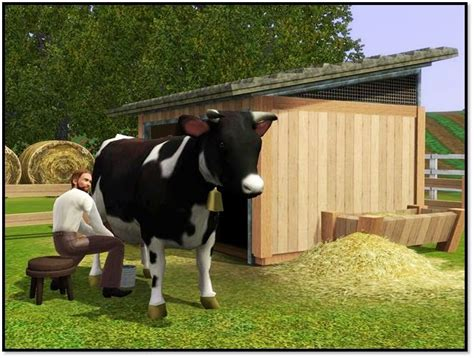 user blognikelcow premium content  sims wiki