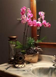 Plante Verte Salle De Bain : orchid e dans la salle de bains ~ Melissatoandfro.com Idées de Décoration