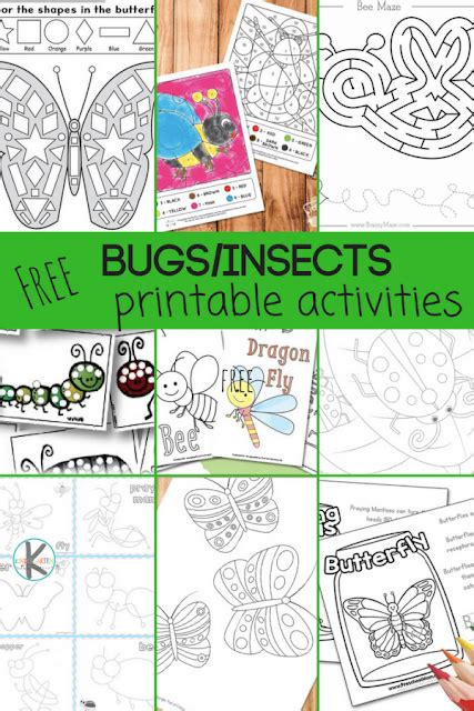 28 free insect worksheets kindergarten worksheets and games