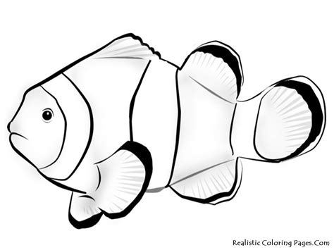 Tropical Fish Coloring Pages by Tropical Fish Coloring Pages This Printable