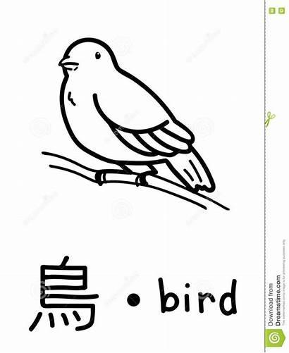 Giapponese Kanji Vettore Educativo Flashcard Uccello Dell