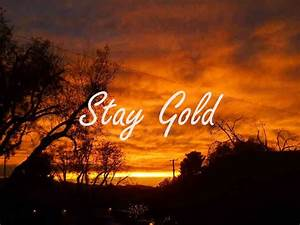 29 Best Stay Golden Ponyboy Images On Pinterest Book