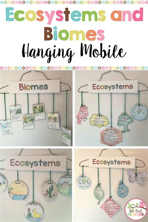 Ecosystems Hanging Mobile {biomes Too}  Hanging Mobile