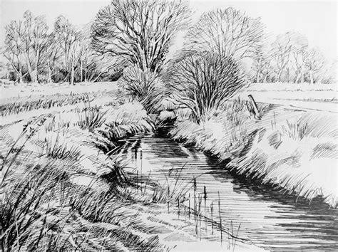 trees   landscape    ink glyn overton