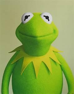 Kermit The Frog by Bartholomew Cooke