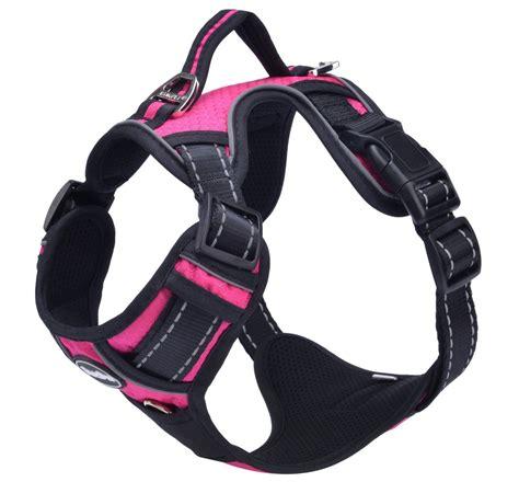 pupteck  front range  pull dog harness  vertical