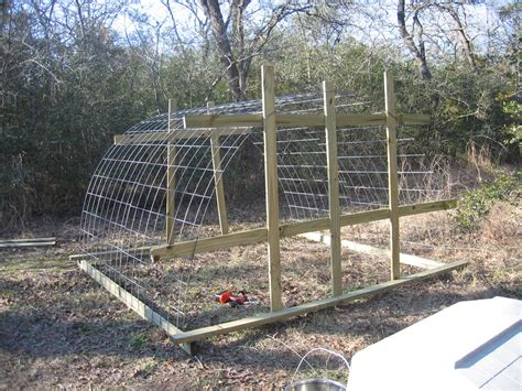 how to build a cheap chicken coop what you should know about cheap chicken coops chicken coop how to