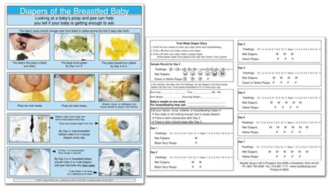 breastfed baby stool chart diary sheet
