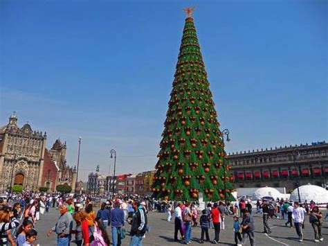 tallest xmas teee in tge workf sri lanka aims to world s largest tree a of granite in new hshire