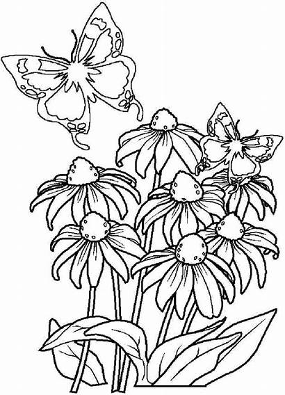Coloring Flowers Pages Bouquet Printable Stencils Coloringtop