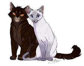 warrior cat oc names warrior cats oc pictures to pin on pinsdaddy