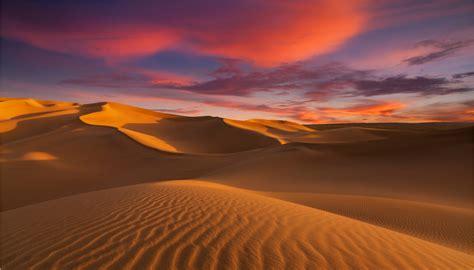 deserto del sahara escursioni   siviaggia
