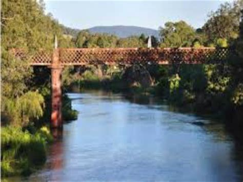 wellington nsw nsw holidays accommodation    attractions