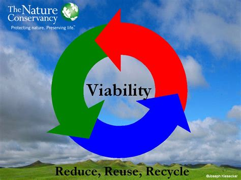 viability reduce reuse recycle
