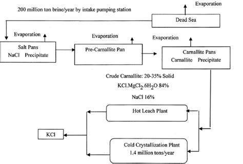 Paint Proces Flow Diagram by General Process Flow Diagram Scientific Diagram
