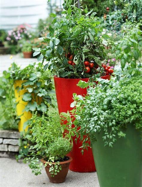 จัดสวน ผักสวนครัว ก็สวยได้   ปลูกผัก, สวนครัว, การจัดสวน ...
