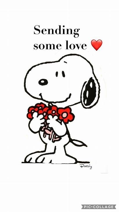 Snoopy Sending Quotes Cartoon Hug Charlie Brown