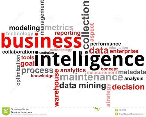 Word Cloud  Business Intelligence Stock Vector  Image. Seagate External Hard Drive Backup Software. Business Security Doors Global Green Insurance. Computer Repair West Los Angeles. Law Enforcement Schools In Mn. Adoption Agencies In Southern California. Clean Room Chairs Class 100 Bmw X5 M Power. Rehabilitation Institute Of Kansas City. Social Media Degree Online New Cable Networks