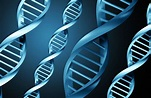 Computer files stored accurately on DNA in new ...