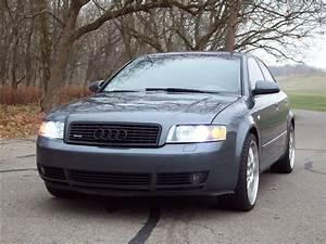 Audi A4 2003 : diabolicalsound 2003 audi a4 specs photos modification info at cardomain ~ Medecine-chirurgie-esthetiques.com Avis de Voitures