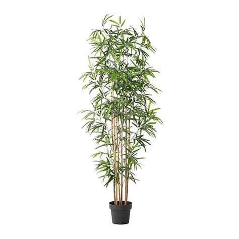 Bambus Le Ikea by Fejka Topfpflanze K 252 Nstlich Ikea
