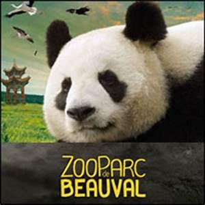 Billet Zoo De Beauval Leclerc : vente flash billets zoo de beauval avec 33 de r duction ~ Medecine-chirurgie-esthetiques.com Avis de Voitures