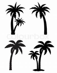 Palme Schwarz Weiß : tropische palme set symbole schwarze stockfoto colourbox ~ Eleganceandgraceweddings.com Haus und Dekorationen