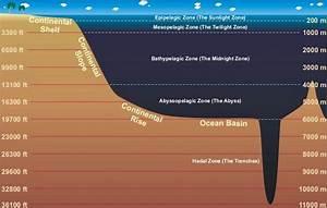 Mri Zones Diagram