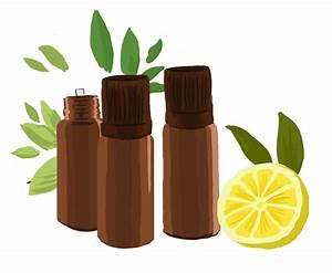 Comment Diffuser Huile Essentielle : diffuser les huiles essentielles aroma zone ~ Dode.kayakingforconservation.com Idées de Décoration