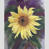 Yellow Flower Painting | 600 x 731 jpeg 170kB