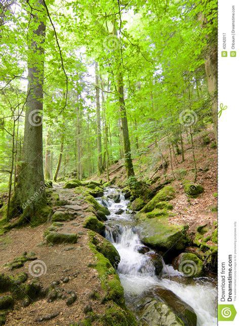The Gertelbach Waterfalls Stock Photo Cartoondealercom