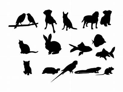 Vector Pet Silhouettes Animal Pets Ai Graphics