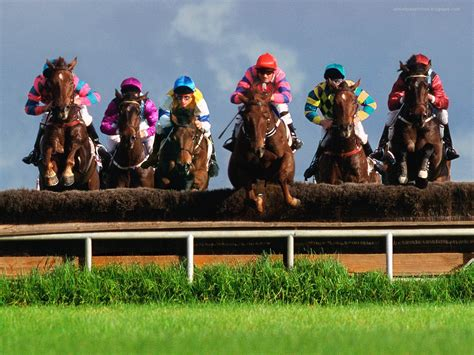top  amazing  dashing horse racing wallpapers  hd