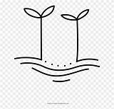 Coloring Sprouts Clipart Pinclipart sketch template
