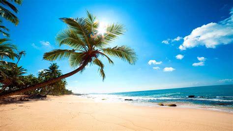 HD Hintergrundbilder strand palmen meer sand sonne sommer urlaub, desktop hintergrund