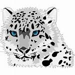 Leopard Snow Clipart Clip Cartoon I2clipart Icon