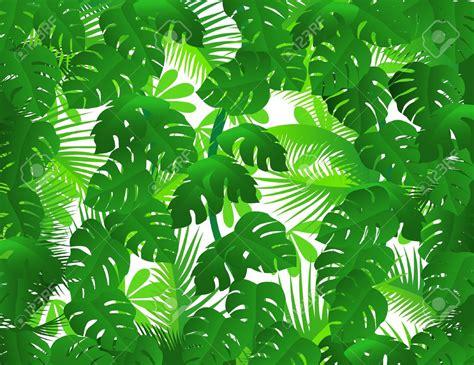 Rainforest Clipart Tropical Rainforest Leaves Clip Cliparts