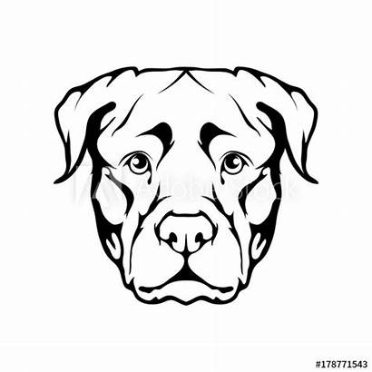Rottweiler Icon Drawing Dog Clipartmag Vector