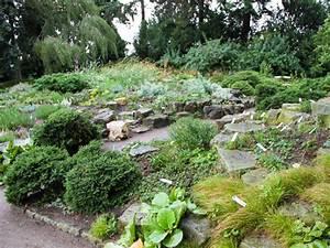 Die Schönsten Steingärten : wer steinreich ist bekommt viele bl ten ploberger ~ Bigdaddyawards.com Haus und Dekorationen