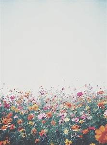 Hipster Floral Background   www.pixshark.com - Images ...