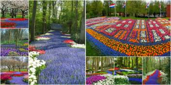 Kinds Of Beds by The Most Beautiful Gardens Of The World