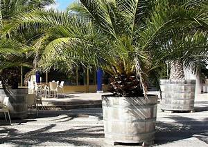 Pflanztopf Für Palmen : pflanzk bel aus holz f r terrassenpflanzen ~ Lizthompson.info Haus und Dekorationen