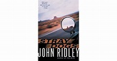 Stray Dogs by John Ridley