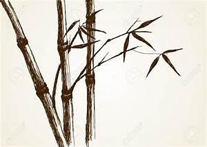 Drawn bamboo bamboo tree - Pencil and in color drawn ...