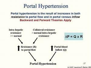 PPY 222 Gastrointestinal Pathophysiology, Spring 2007 ...