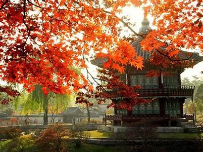 Korea South Seoul Busan Gyeongju Park National
