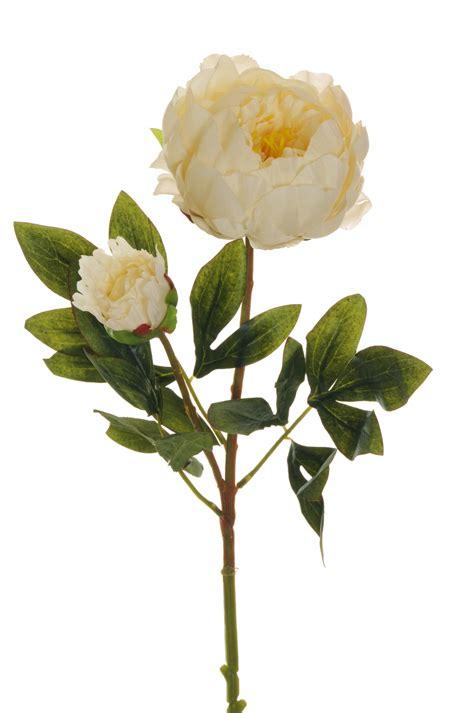 PEONIJA mākslīgais zieds 66cm - Fioro - kvalitatīvi mākslīgie ziedi un dekorācijas